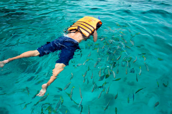 Swim with colorful fish at Koh Yang