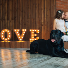 Wedding photographer Anastasiya Lyalina (lyalina). Photo of 07.11.2016