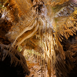 by Brandi  Rhone  - Landscapes Caves & Formations