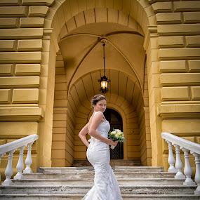 bride and stairs by Jovan Barajevac - Wedding Bride ( sremski karlovci, stairs, session, wedding, dress, magic moments, white, bride )