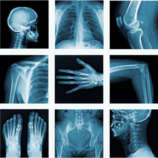 Proyecciones Radiologicas