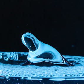 by Ben Porway - Abstract Water Drops & Splashes ( water, highspeed, liquid, peaceful, splash, fluid, blue, drips, ocean, natural )