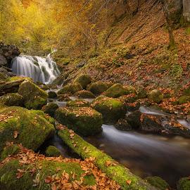 Kroparica by Joško Šimic - Landscapes Waterscapes (  )