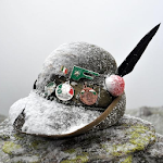 Alpini Online Icon