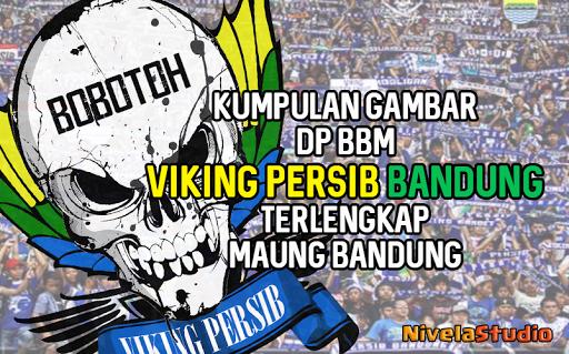 Dp Viking Persib Bandung 10 Apk By Nivelastudio Details