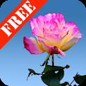 Rose Garden Free icon