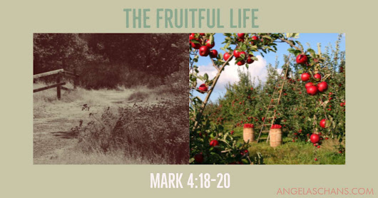 Bible Study: Living a Mature Life In Christ - How to grow in God