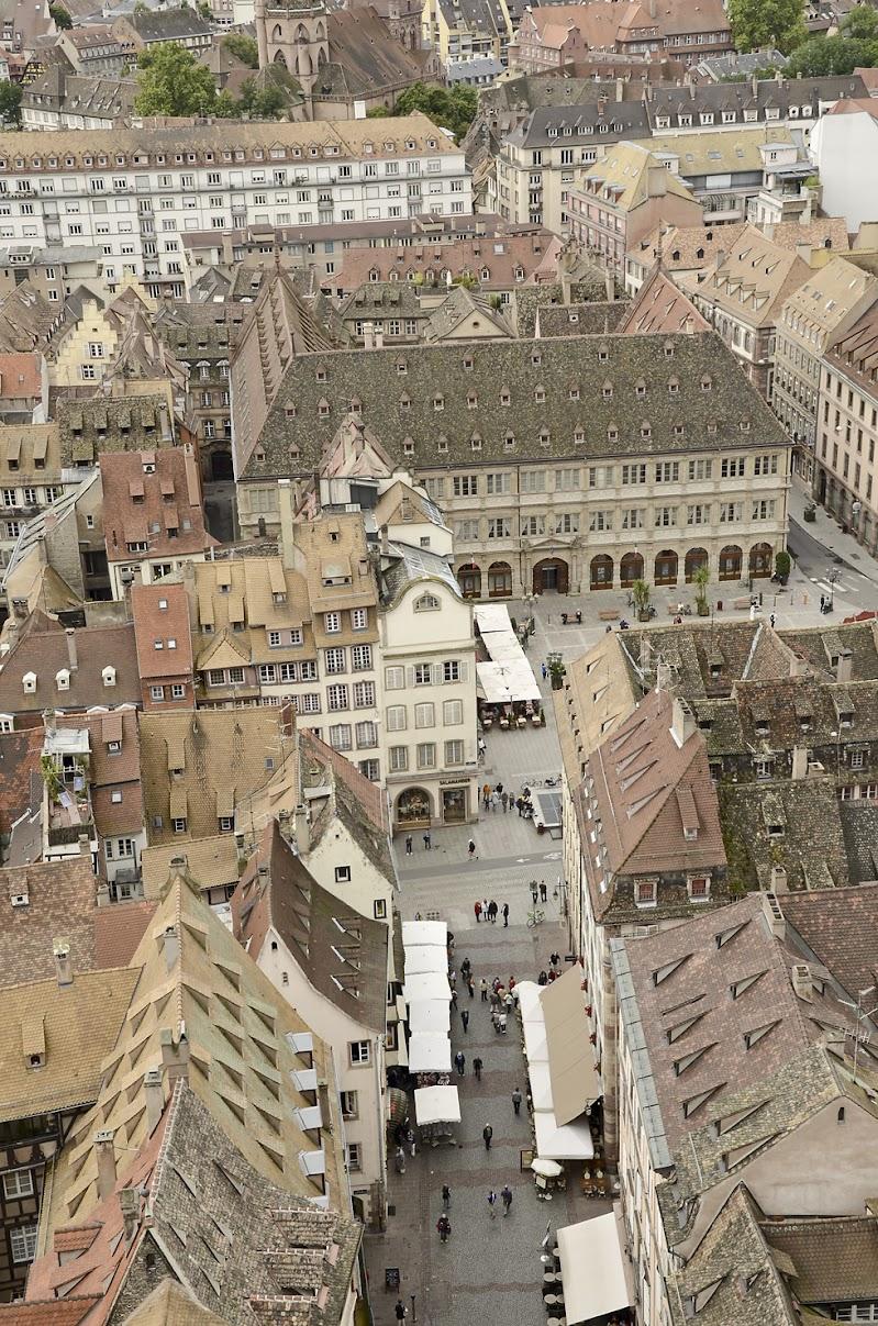Strasburgo dall'alto della Cattedrale di Cristina Rocca