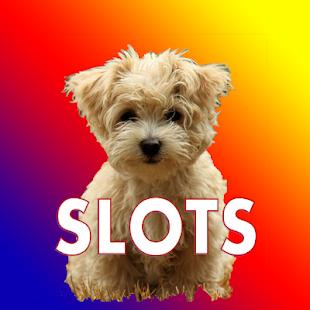 Vegas Puppy Slots (Free) for PC-Windows 7,8,10 and Mac apk screenshot 2