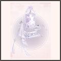 純白の玉簾