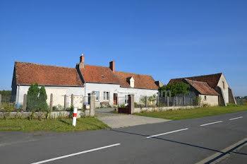 maison à Marigny-les-Usages (45)