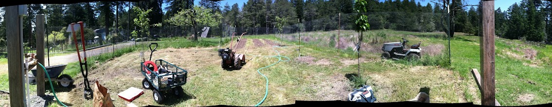 Photo: Gardening project Panorama - plumbing & tilling!