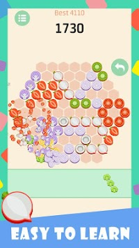 Salad Puzzle apk screenshot