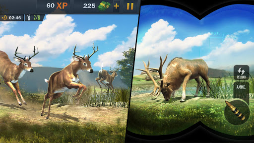 Animal Hunting Sniper Shooter  screenshots 2