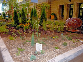 Photo: Were ever we are, we try to educate the public, here, showing them all about drought tolerant scree gardens.