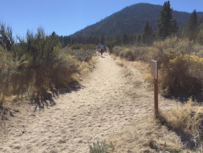 Photo: Sandy Trail