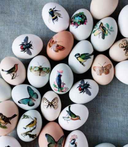 DIY Egg Decorating Ideas