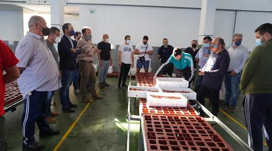 El Ayuntamiento colabora con el sector pesquero adquiriendo 20 mesas de subasta