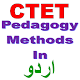 CTET Pedagogy In Urdu