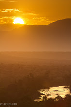 Photo: Taken live on safari from africa from http://www.kylefoto.com