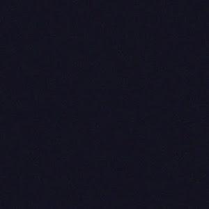ティアナ J31 カスタム仕様のカスタム事例画像 ウメさんさんの2020年09月24日23:37の投稿