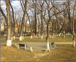 Photo: Turda - Parcul Central, banci  - 2019.02.25