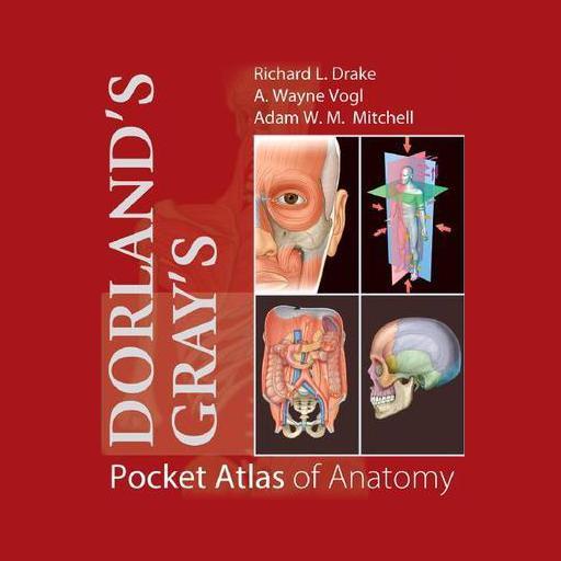 Dorland's Gray's Pocket Atlas of Anatomy Icon