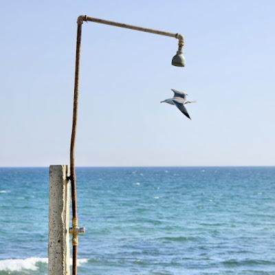 Una doccia al volo... di Salvatore Gulino