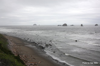 Photo: (Year 2) Day 355 - A Windswept Beach South of Port Orford