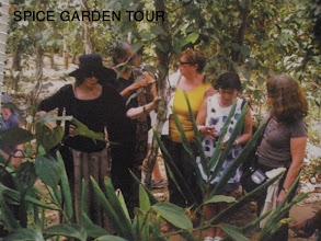 Photo: Spice Garden Tour