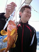 Photo: キジハタキャッチ! 「青物を釣らせろっ!」