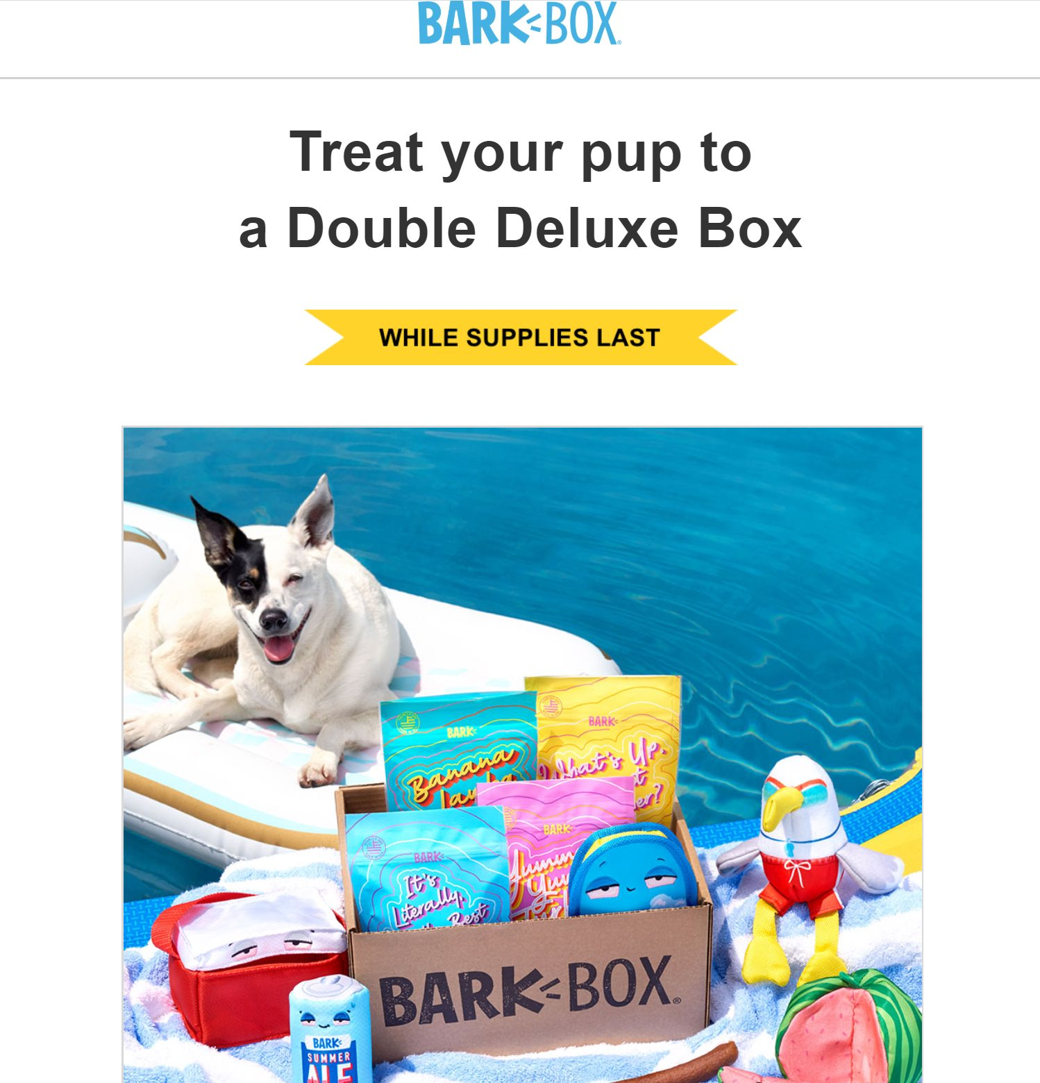 Example of a WooCommerce follow up email from BarkBox