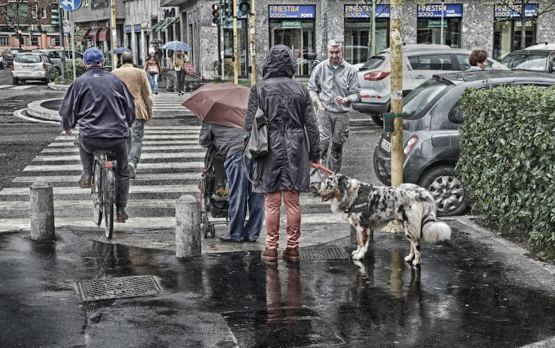 Quando piove a Milano di Rossella13