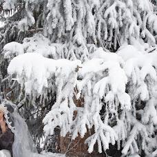 Свадебный фотограф Валентина Ликина (myuspeh2011). Фотография от 01.01.2015