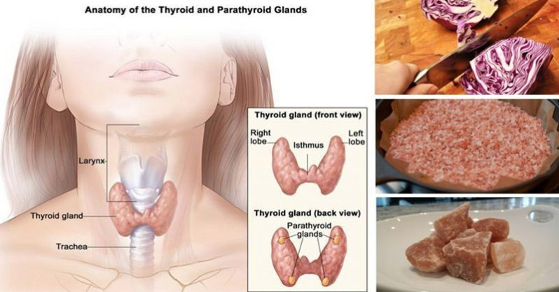 If You Feel Sad, Backed Up or Tired, Start Eating These 5 Thyroid Boosting Foods