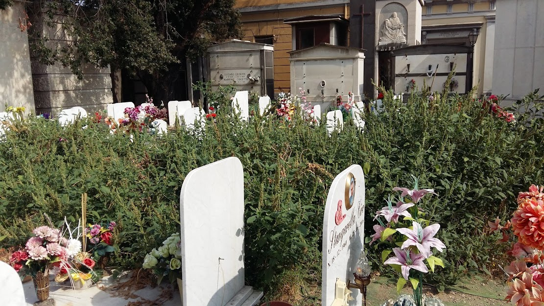 Cimitero di Miano