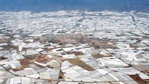 Panorámica de invernaderos en el campo almeriense.