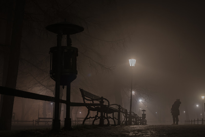 fog in the night di antonioleo