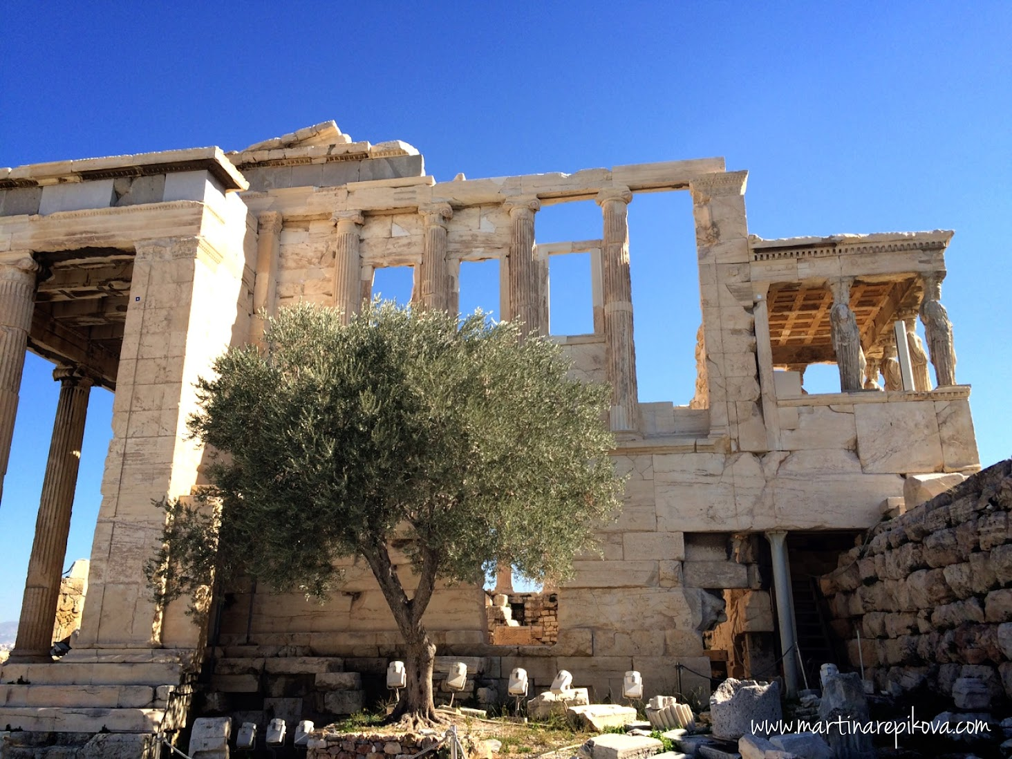 The Olive Tree at Erechteion, Acropolis, Athens, Greece