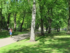 Photo: Kronvalda park
