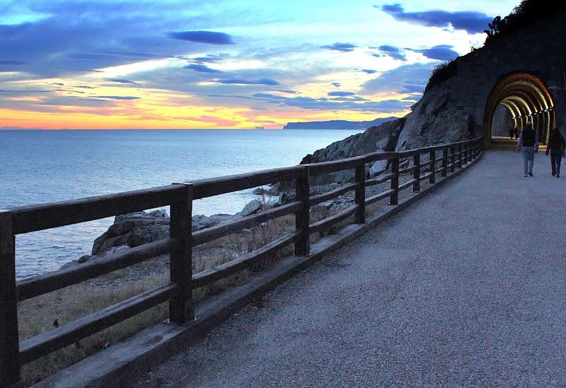 Panoramica. di Naldina Fornasari