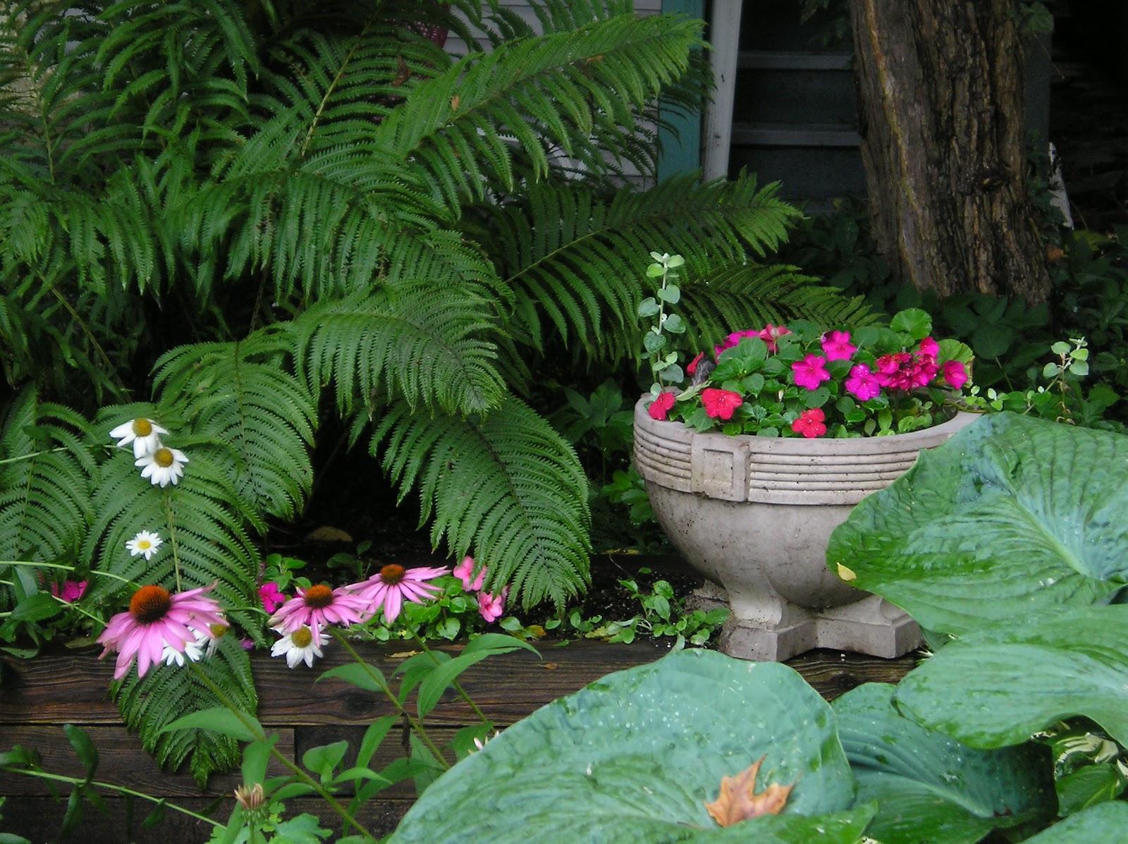 Shade_garden,_Chautauqua.jpg