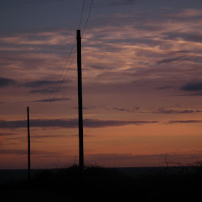 telegraph pole  by Paul Rayney - City,  Street & Park  Skylines ( phoneline, sky, pole, sunset, evening )