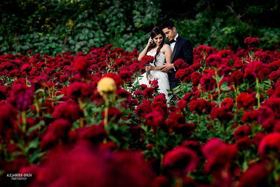 Wedding photographer Alejandro Souza (alejandrosouza). Photo of 22.11.2018