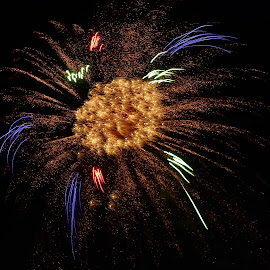by Randy Young - Public Holidays July 4th
