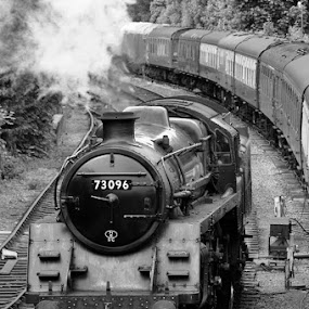 Through The Yard by Steve Corcoran - Transportation Trains ( alresford station, watercress line, black & white, hampshire, steam )