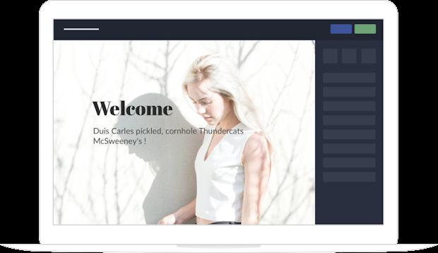 Professional website builder