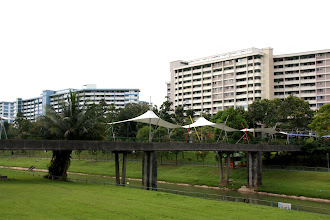 Photo: Year 2 Day 133 - Bridge and Flats in Sunset Estate