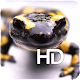 Tiger Salamander HD Wallpaper APK