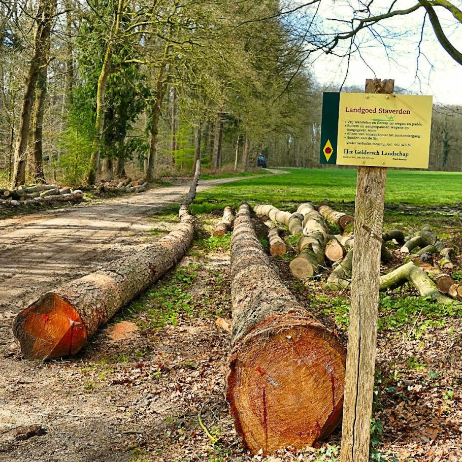 Aangeboden door: Stichting Microtoerisme InZicht Fotoblog Staverden park landgoed bos beek
